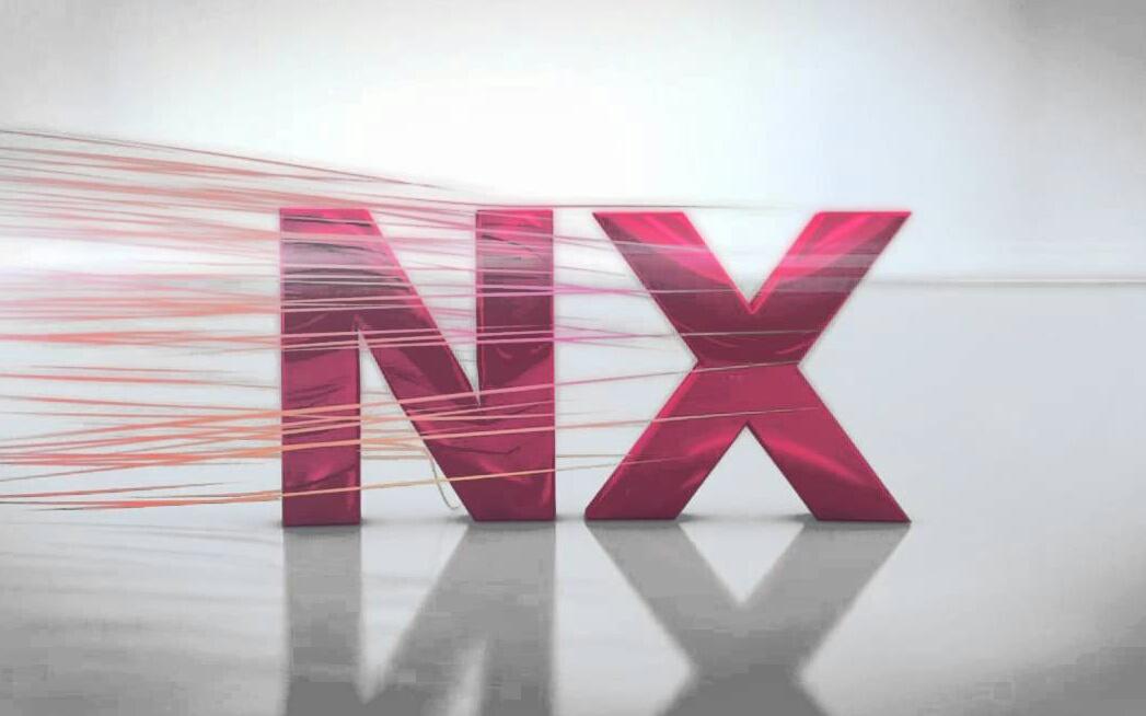 NX 10